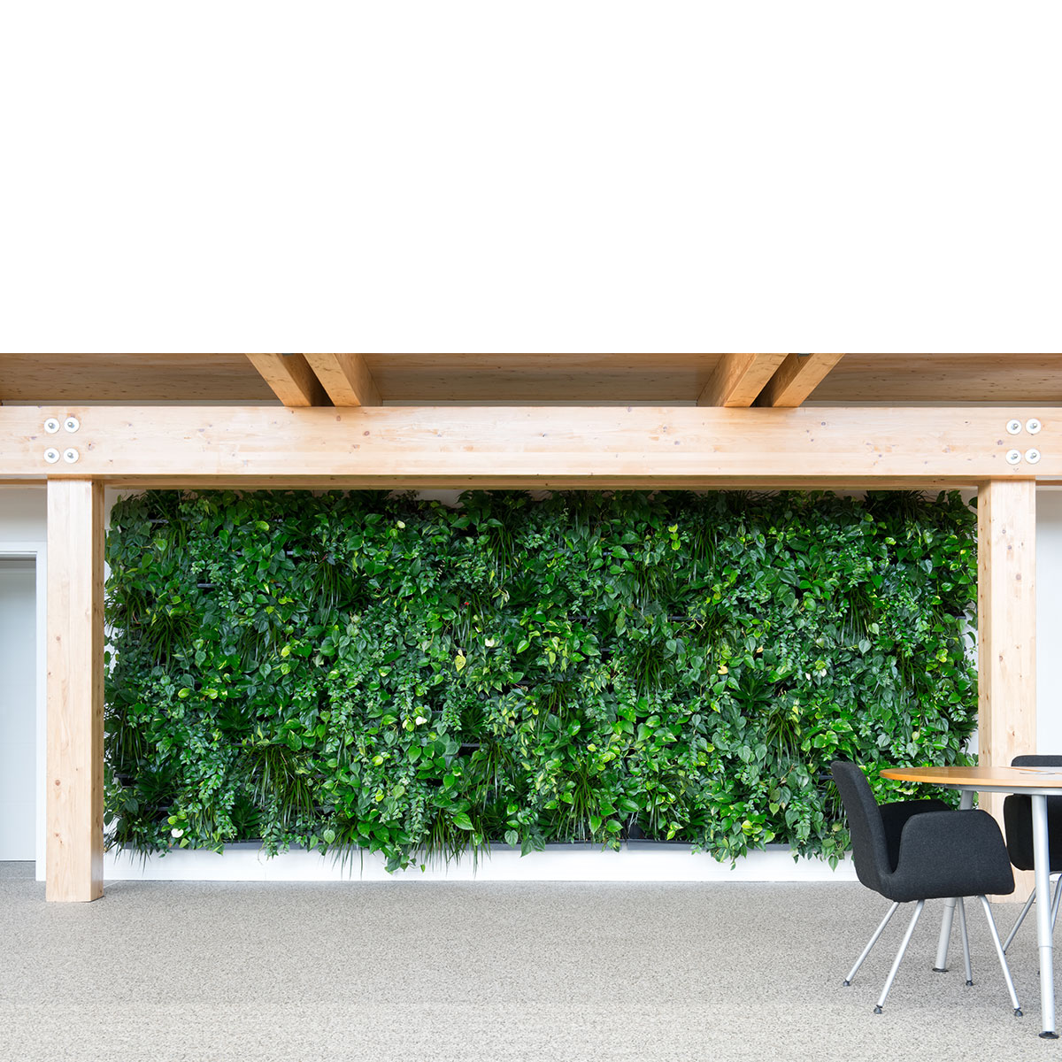nextgen_-_living-wall-room-divider-44