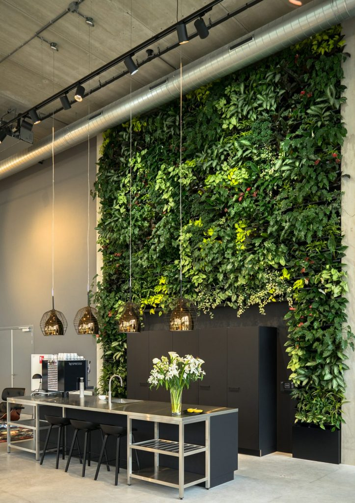 NEXTGEN-Living-Wall-85-e1496738118494-723x1024
